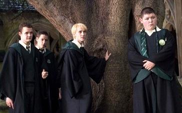 《哈利·波特与火焰杯》片段9