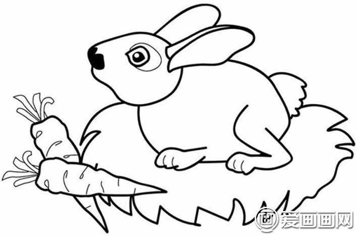 表情 简笔画兔子图片大全,儿童简笔画兔子卡通图片 龙轩美术网 表情