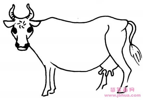 表情 动物简笔画 牛 简笔画网 表情