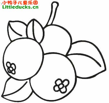 表情 山楂简笔画图片大全 简笔画山楂水果 小鸭子儿童乐园littleducks.