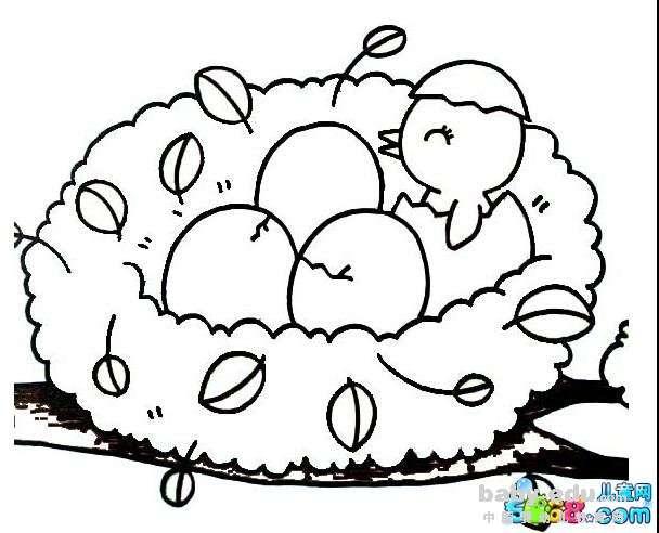 表情 小动物简笔画大全 鸟窝里的小鸟 动物简笔画 中国婴幼儿教育网 表情