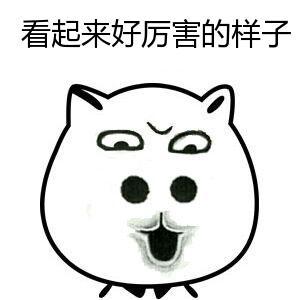 看起来好厉害的样子-表情 大鼻孔猥琐猫表情 臭不要脸 九蛙图片 表情