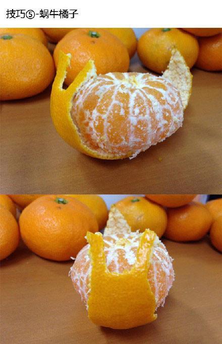 表情 橘子花样 养父的花样年华 缕空花样600图解 橘子树简笔画 西西下载网 表情