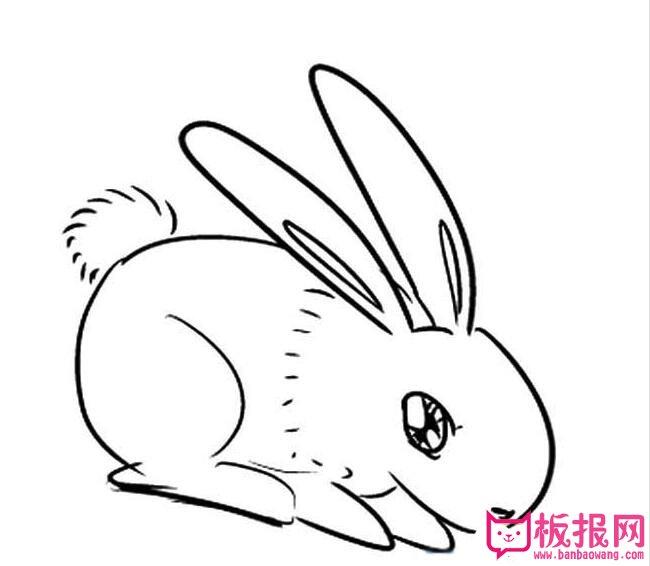 表情 小兔子简笔画图片大全,可爱的小兔子 板报网 表情