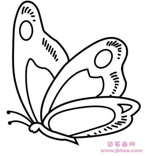 表情 蝴蝶简笔画图片 简笔画网 表情