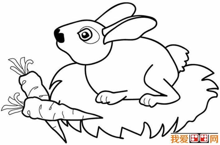 表情 简笔画兔子图片大全,儿童简笔画兔子卡通图片 儿童画教程 学画画 我爱画画网 表情