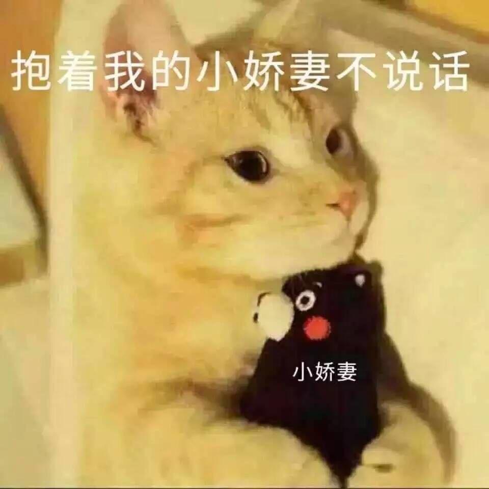 表情 抱着我的小娇妻不说话 吸猫吸猫 喵星人 萌萌哒表情 发表情 fabiaoqing.com 表情
