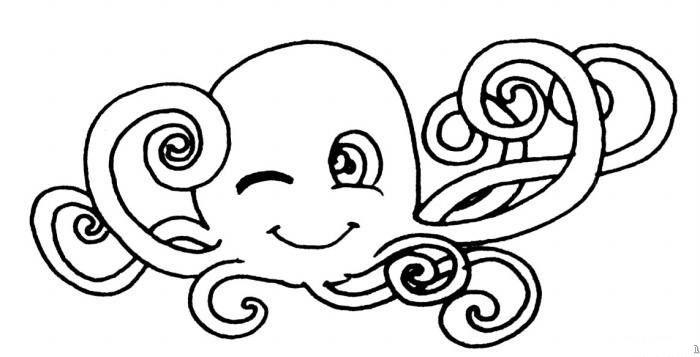 表情 章鱼简笔画 动物简笔画大全 美术必学课 表情