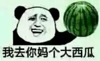 表情 去你妈个大西瓜 去你妈个大西瓜表情包 去你妈个大西瓜表情 梨子