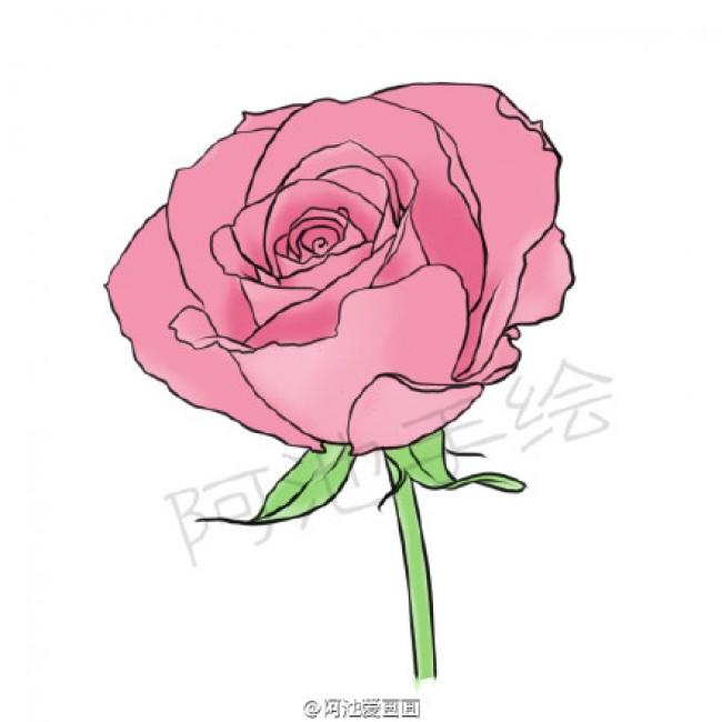 表情 玫瑰花简笔画教程图片玫瑰花的画法玫瑰花简笔画怎么画 才艺君 表情