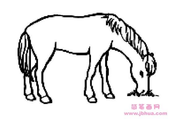 表情 吃草的马简笔画 简笔画网 表情