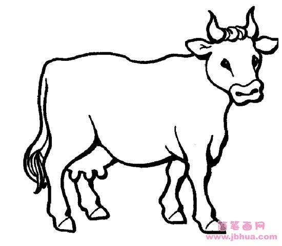 表情 牛的简笔画图片 简笔画网 表情