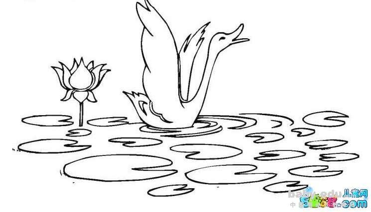 表情 风景简笔画图片大全 天鹅戏湖 风景简笔画 中国婴幼儿教育网 表情