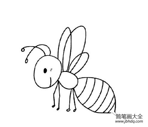 表情 卡通小蜜蜂简笔画图片 昆虫简笔画 简笔画大全 表情