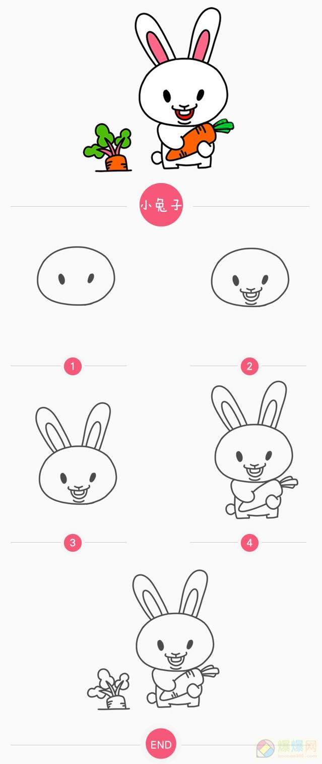 表情 小兔子简笔画教程 怎样画简笔画小兔子吃萝卜 爆爆简笔画 表情