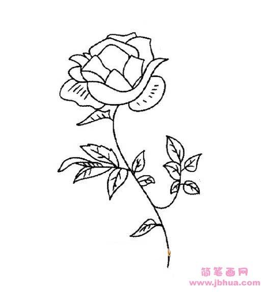 表情 好看的玫瑰花简笔画图片 简笔画网 表情