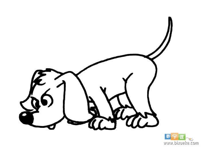 可爱的的小狗简笔画 动物简笔画大全 美术必学课 表情