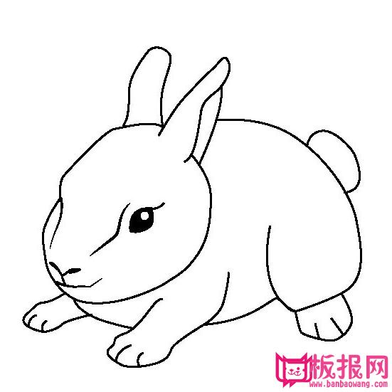 表情 兔子抱月饼的简笔画 兔子抱月饼的简笔画画法 表情