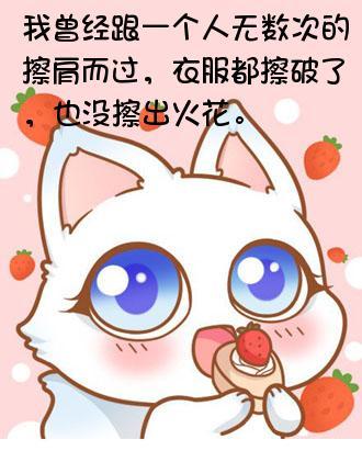 表情 小猫咪草莓制作 小猫咪草莓表情包生成 表情猫 表情