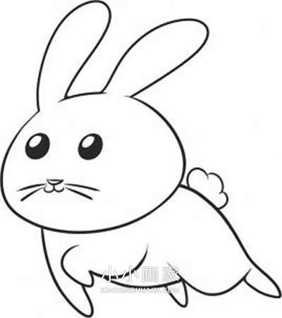 表情 跳跃的兔子简笔画画法图片步骤 小小画家 表情