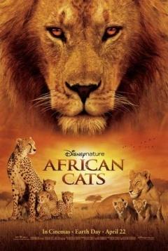 非洲猫科:勇气国度