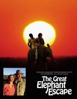 大象逃亡记