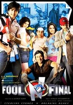 终极傻瓜(2007)