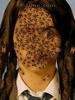 吃蜜蜂的女孩