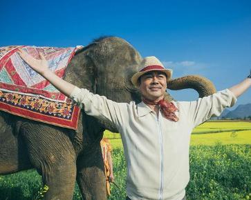 我的宠物是大象