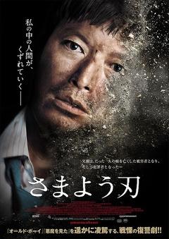 彷徨之刃(2014)