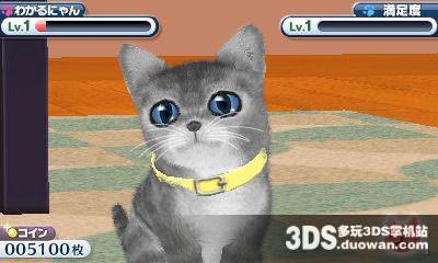 可爱的小猫3d 日版