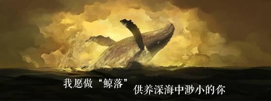 新词必会 | 我愿化身鲸落,陪伴渺小的你