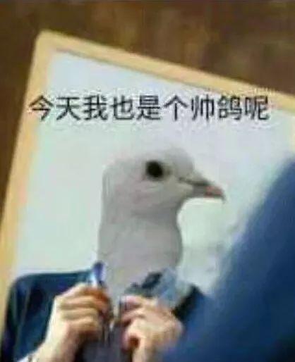 鸽子折纸的步骤图解