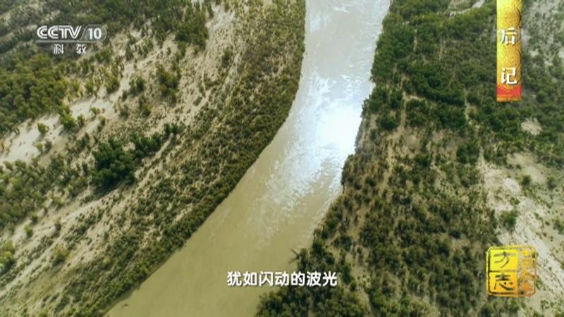 《中国影像方志》 第817集 新疆图木舒克篇