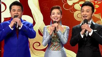 回顾:中央电视台羊年春节联欢晚会