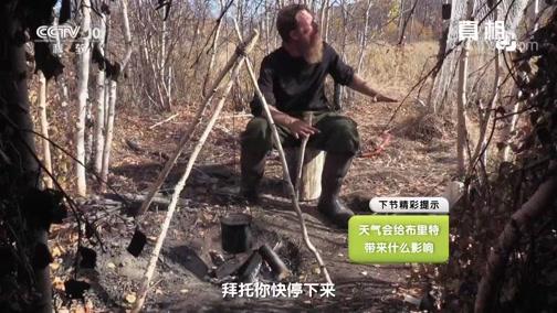 《真相》 20190918 独挑荒野(7)