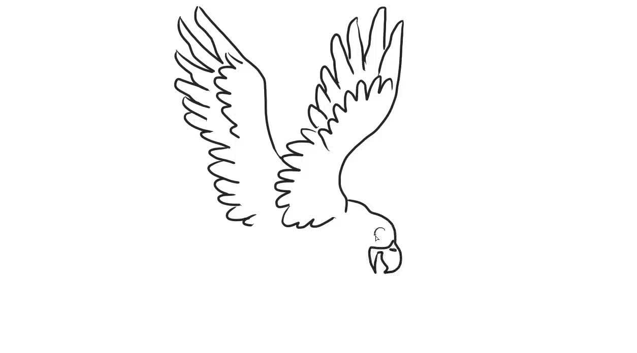 老鹰儿童亲子简笔画