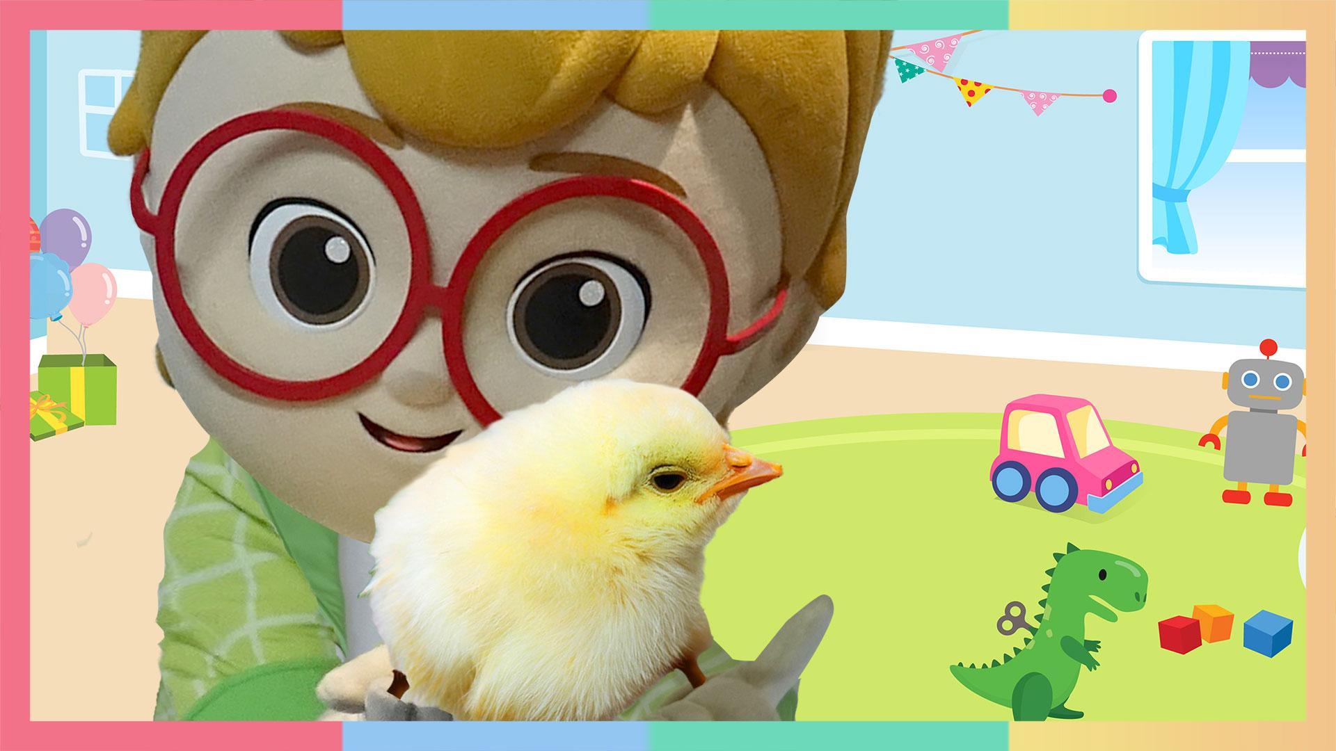 小伊森希望鸡蛋能孵出小鸡。但是他怎么拿来了一盒鹌鹑蛋呢?| 凯利和玩具朋友们 CarrieAndToys