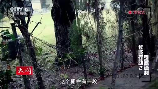 《天网》 20191022 长城行动 第二集 引渡谈判
