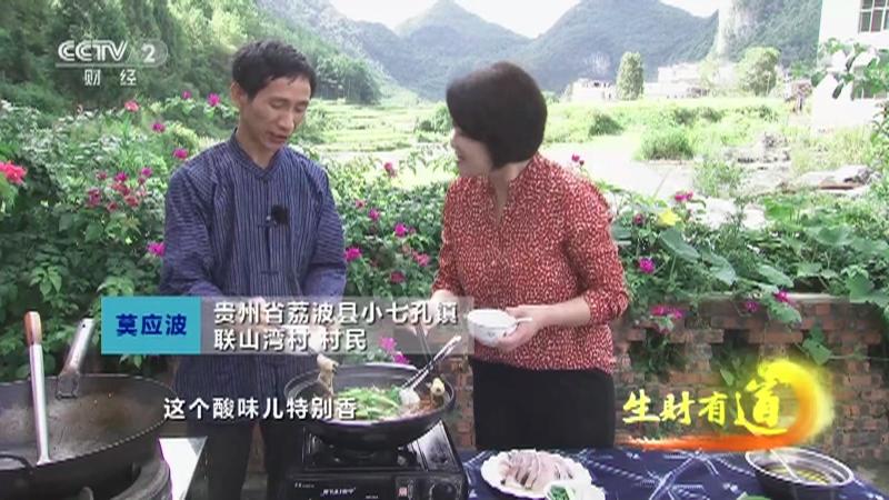 《生财有道》 20210923 乡村振兴中国行——贵州荔波:旅游新看点 增收新起点