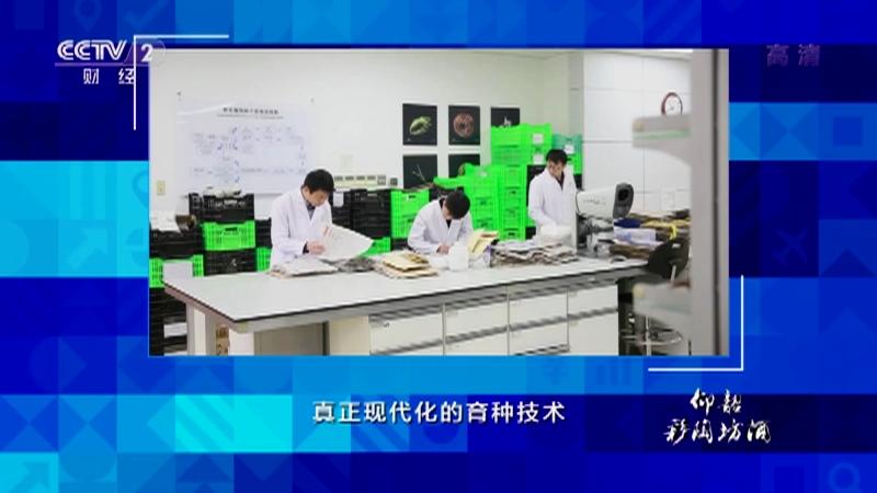 《中国经济大讲堂》 20210919 如何打好种业翻身仗?