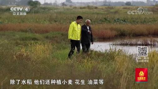 《远方的家》 长江行(69) 秋水长天 美在宿松 20191113