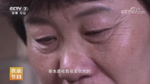 [家乡菜 中国味]武川味道 20190727