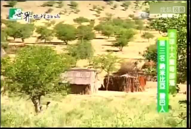 納米比亞殷巴人 原始自然红种人