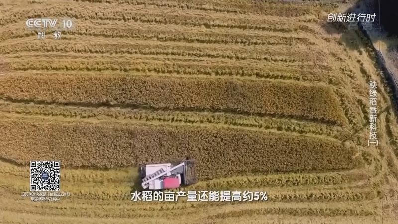 《创新进行时》 20210728 秧绿稻香新科技(一)