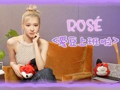 专访ROSE:表情包女王可爱爆发 ROSE升级网购达人