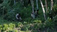 孤岛浮生(预告片)