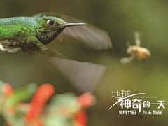 《地球:神奇的一天》拍摄特辑 中国神奇动物首曝光