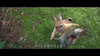 三只小兔兔排排列摘果子