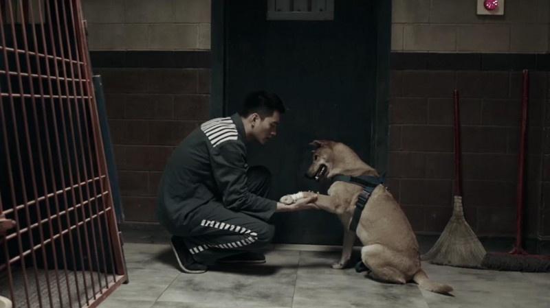 《监狱犬计划》曝刘帅良《伙伴》MV